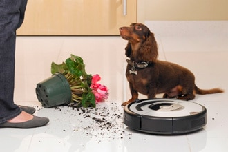 Robots Aspirador para Mascotas